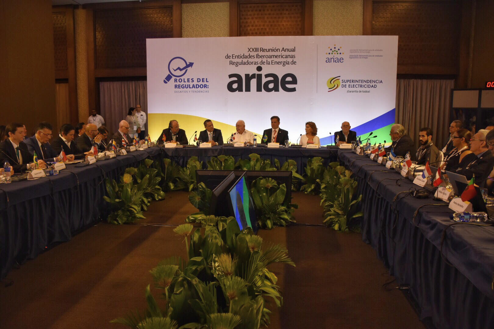 Isa Conde pide evitar rezago en la regulación ante avance del mercado eléctrico