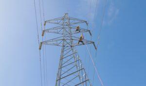 Consejo explica actuales administradores de las EDES reciben menor compensación